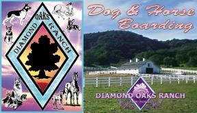 Diamond Oaks Ranch - Dog Boarding & Kennel